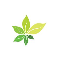 fresh bio green leaves organic herb symbol vector image