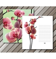 orchid cards for your design Background vector image