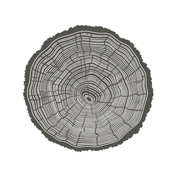 Tree rings isolated vector