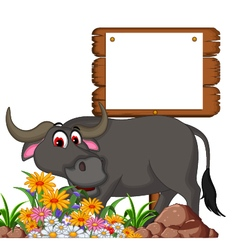 cute buffalo cartoon posing with blank board for y vector image vector image