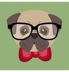 cute cartoon fashionable puppy bulldog vector image