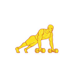 fitness athlete push up dumbbell drawing vector image
