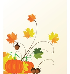 pumpkins leaves vector image