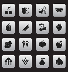 set of 16 editable berry icons includes symbols vector image
