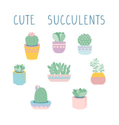 succulents and cacti vector image