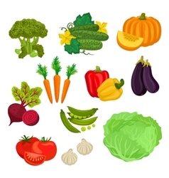 Farm vegetables isolated flat icons vector image vector image