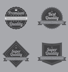 Set of Vintage Retro Badge vector image