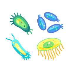 bacteria set different germs vector image