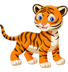 cartoon baby tiger isolated on white background vector image