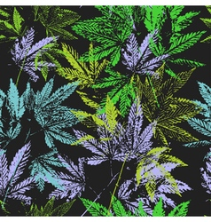 Seamless pattern leaves of cannabis vector