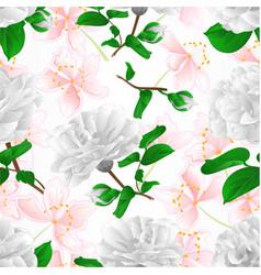 seamless texture three white flowers camellia vector image