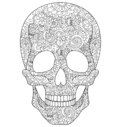 Skull coloring for adults vector