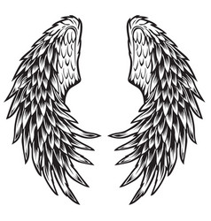 wings bird black white 010 vector image