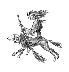 witch flies with a broom and a dog ancient vector image