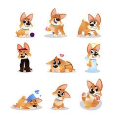 Set of cartoon corgi funny little dog in vector