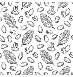 seamless pattern with pistachio nuts vector image vector image