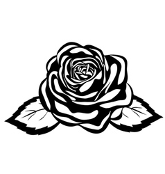 Abstract black and white rose vector