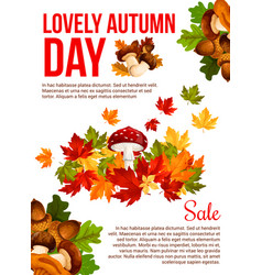autumn sale promotion banner template design vector image