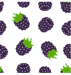 blackberry seamless pattern isolated on white vector image