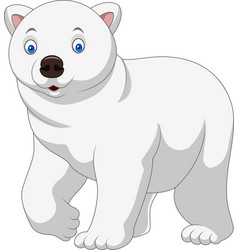 cartoon polar bear isolated on white background vector image