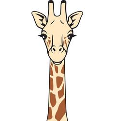 Giraffe head in color icon vector