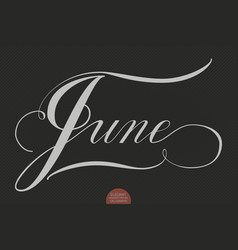 hand drawn lettering june elegant vector image