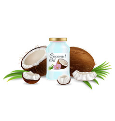 natural coconut oil beauty product vector image