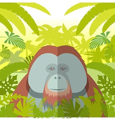 Orangutan on the Jungle Background vector