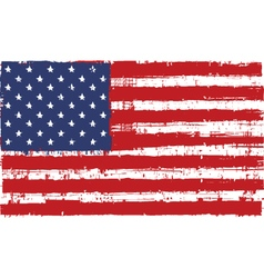 flag us vector image