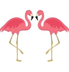 Two pink flamingo vector image vector image