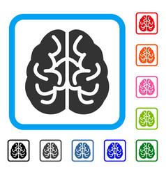 brain framed icon vector image