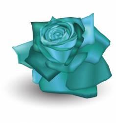 Cyan rose vector