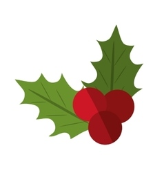 Isolated leaves with berry of Christmas season vector image
