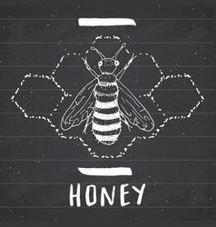 Vintage label hand drawn bee grunge textured vector