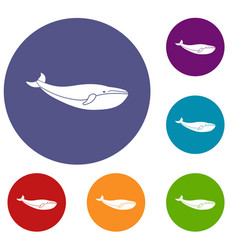 whale icons set vector image