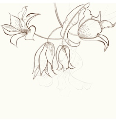 background with stylized flowers vector image vector image