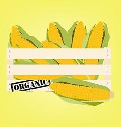 Corn in box vector image vector image