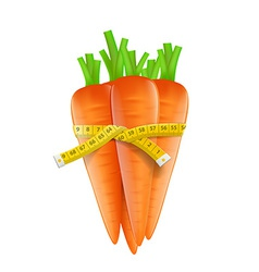 Measuring tape around a carrot vector image vector image