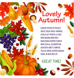 autumn leaf vegetable and fruit poster template vector image