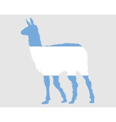 Lama argentina vector