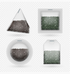 tea bags with black and green brewing tea vector image