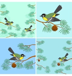 Titmouse on pine branch set vector