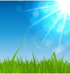 Summer Abstract Background with Grass vector image