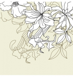 template for decorative card vector image