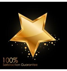 100 satisfaction guarantee vector