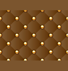 upholstery pattern vector image