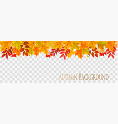 Abstract autumn panorama with colorful leaves on vector