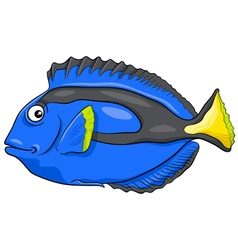 Blue tang fish character vector