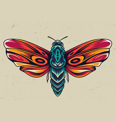 Colorful beautiful butterfly concept vector
