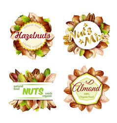 Premium colorful natural nuts labels set vector